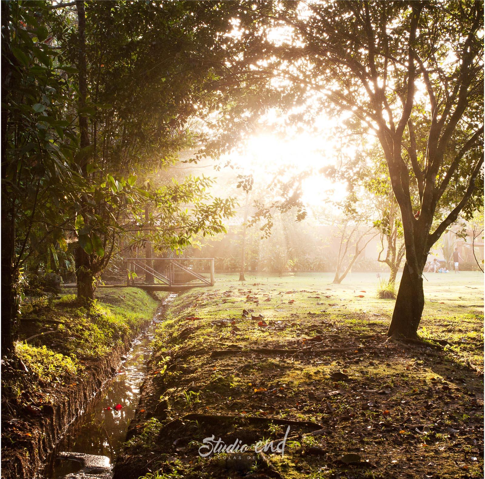 Photographie et reportage de voyage jardin Nicolas Delsaut