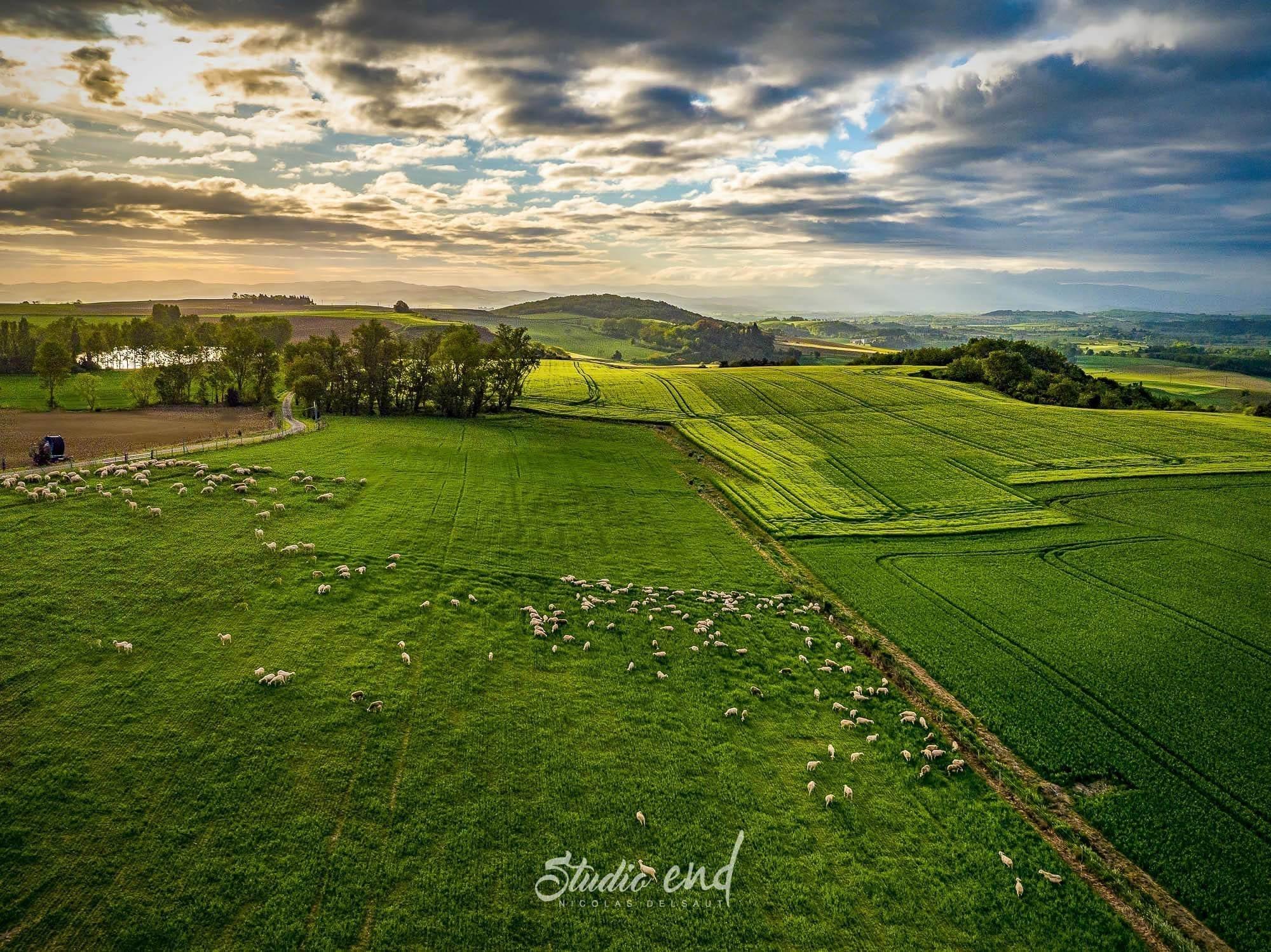 prise de vue drone sur la campagne de l'Aude, photographe