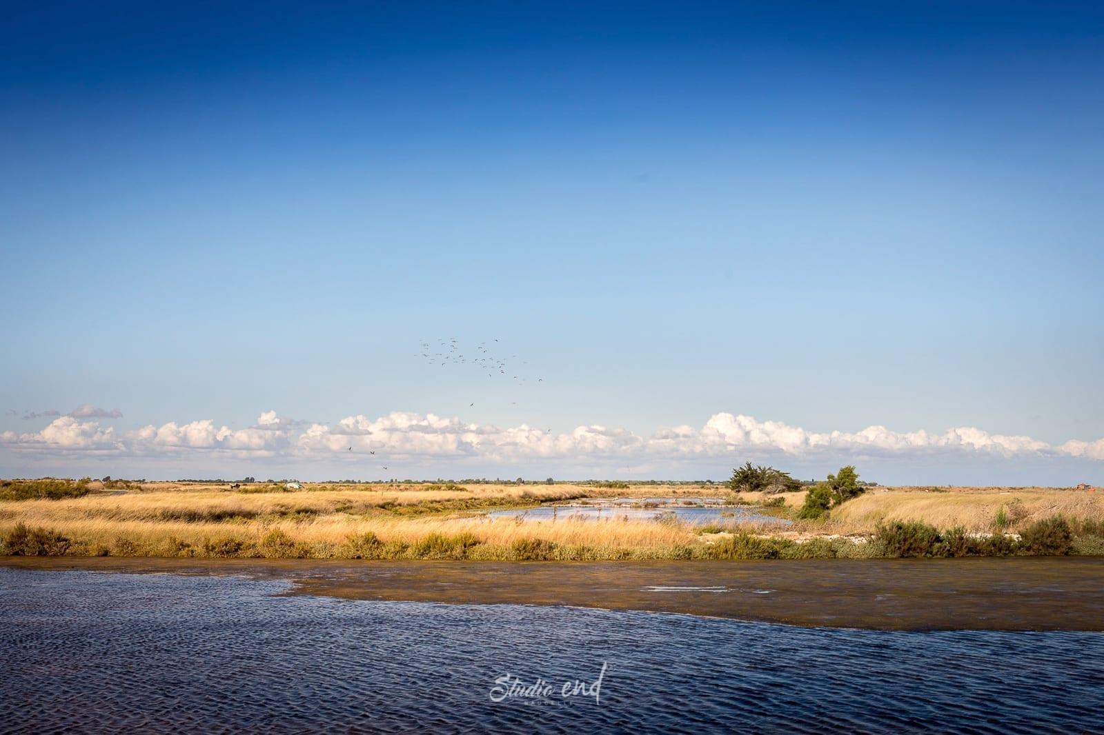 Paysage de l'ile de ré en France, photographe Tarn