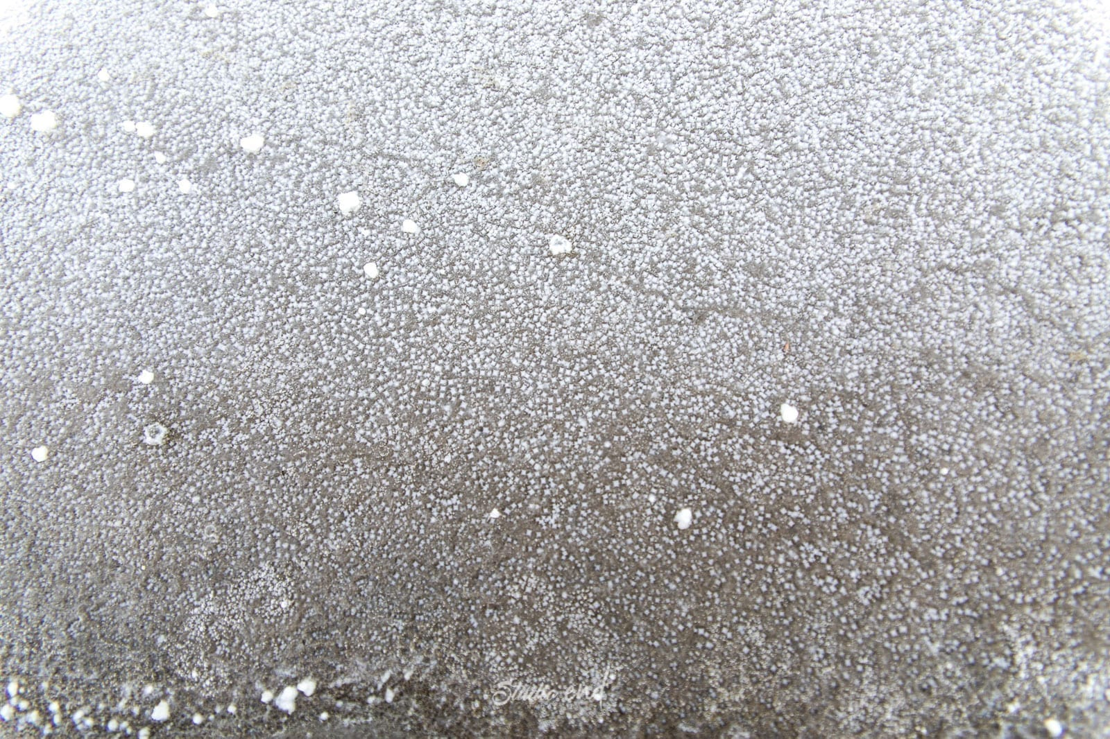 Photo de formation de sel