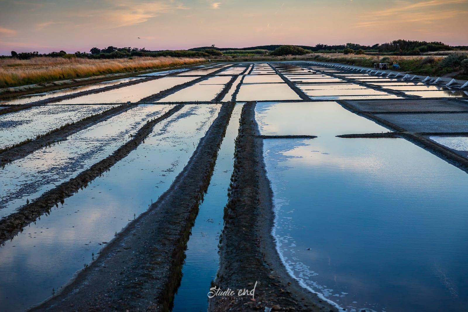 Paysage de l'ile de ré en France, photographe Aveyron