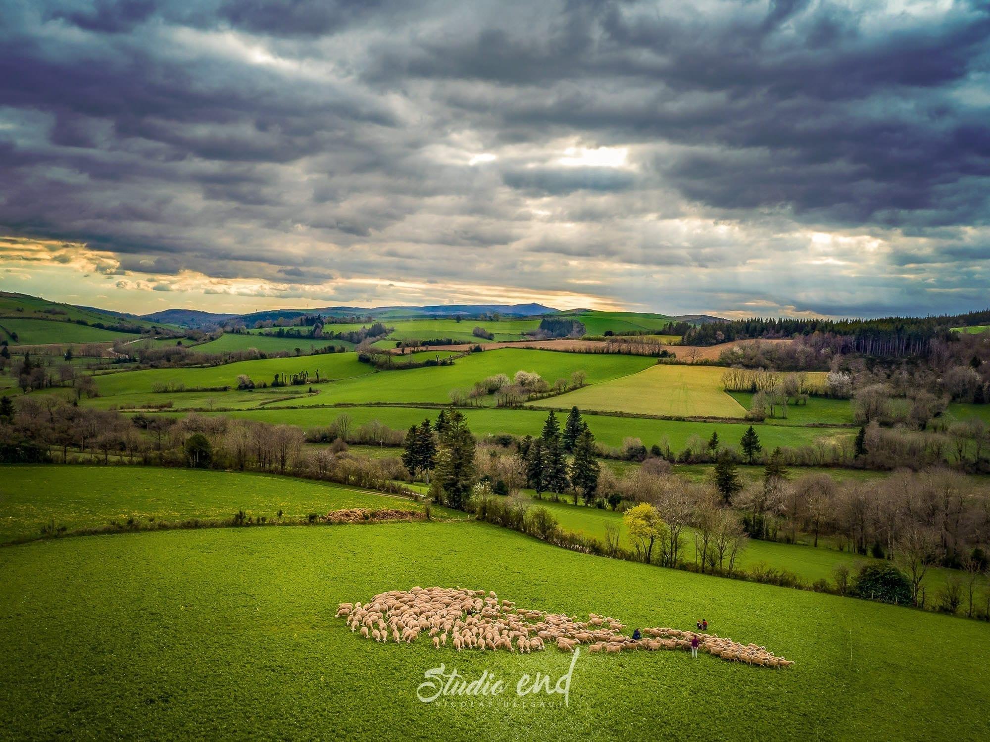 Photographie aérienne avec un drone campagne du Tarn proche d'Albi