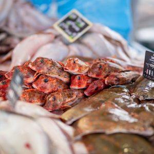 Photographe de produits culinaires brut proche d'Albi